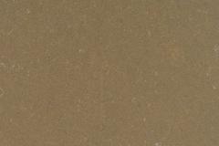 Fossil-Brown Quartz